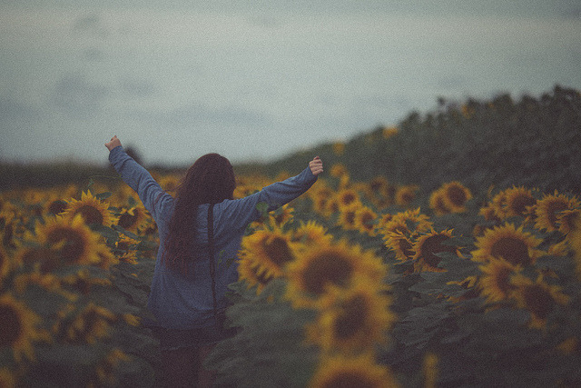 Explore by ChrisandAhn on Flickr.