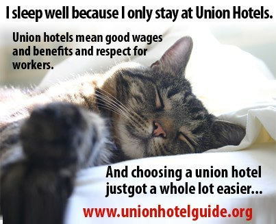 unitehere:  The kitten speaks the truth. Choose a union hotel and sleep well.http://unionhotelguide.org/