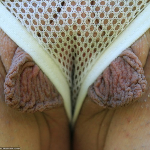 lovelylonglabia:  lusciouslabia:  honey_pma_200905_162sq  Love Honey's pussy lips and she is definitely proud of them! As she should be!