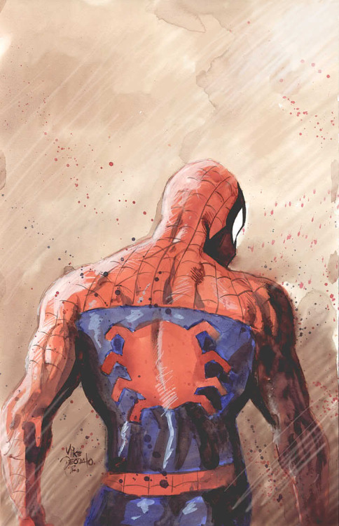 comicblah:  Spidey by Mike Deodato Jr.