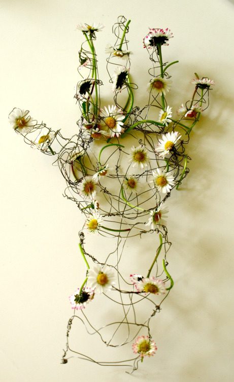 helenbutler:  Untitled wire sculpture with daisies Helen Butler 2011  Artists on tumblr