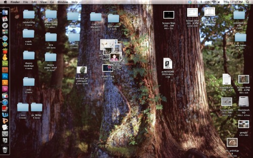 """This is a prime example of how I keep my desktop in the midst of finals. I am a graduate student currently, and although I maintain a slight amount of organization, I cannot help but constantly snag inspiration and throw it on my desktop.  I always use other artists' images as my desktop background too. I hate exposing myself to my own work an unnecessary amount, so I like to look at someone else's when I'm not working on mine. Here's a link to that image, so you guys can go look at the artist's other work."" Elaine Miller, 22, Artist/Photographer, Chicago, IL http://elainemillerphotography.comhttp://ecmiller.tumblr.com"