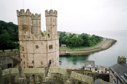 21vines:  Caernarfon (by Peter Gutierrez)
