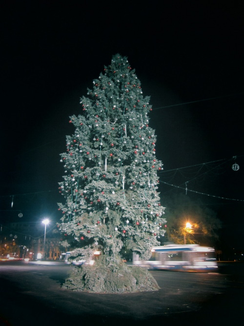 Chisinau is getting into the winter holidays thing too the Christmas tree (real one, pretty tall, cut) is up, the lights are not yet on… it has many medium-sized disco balls - should look cool with the lights on.