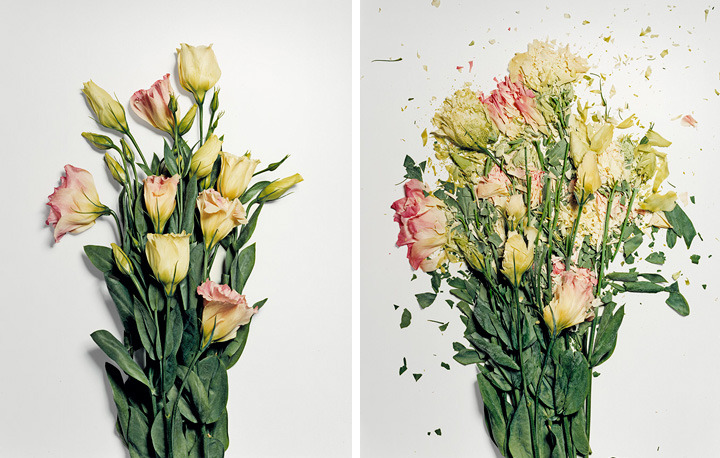 Flowers dipped in liquid nitrogen and then smashed.