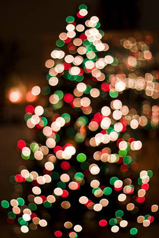 justbesplendid:  Xmas lights