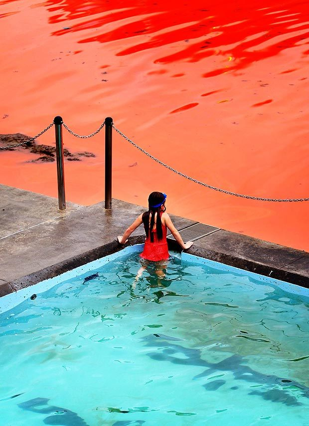 "funk:  ""The Red Sea"" in Bondi - Australia November 2012"