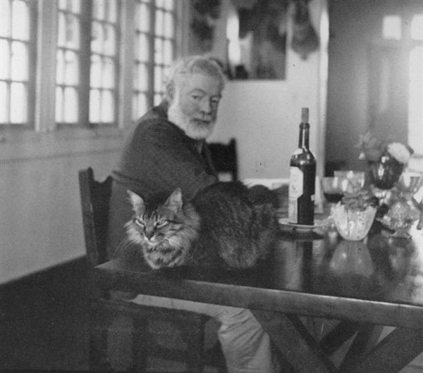 "Ernest Hemingway with his cat""A cat has absolute emotional honesty: human beings, for one reason or another, may hide their feelings, but a cat does not."""