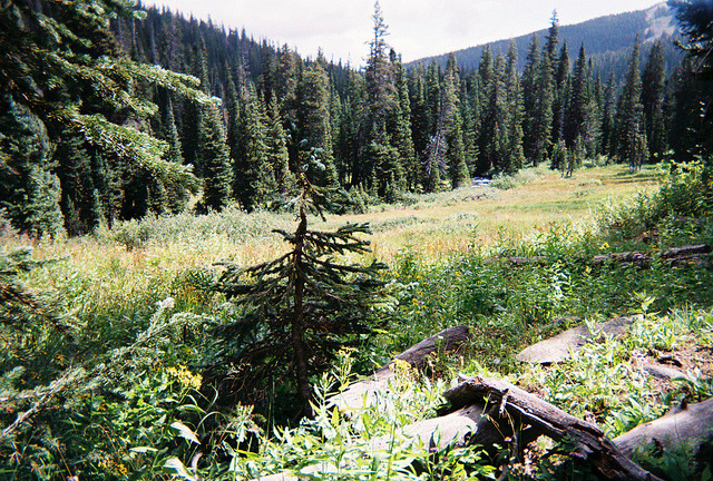g0odwinter:  summer2010_indianpeaks10_sm by ileum on Flickr.