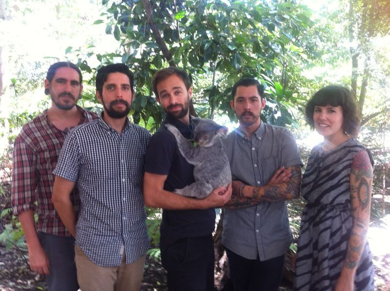 punchcrew:  Punch Australia Tour  A koala is now a member Punch. Rad.