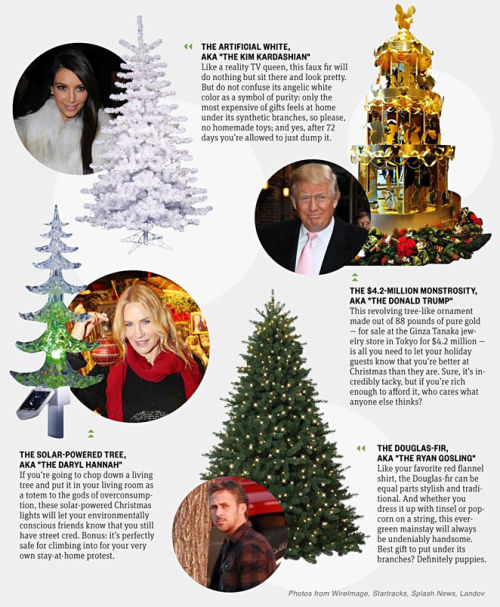 Are you an artificial white or a Douglas fir? Here's what your Christmas tree says about you.