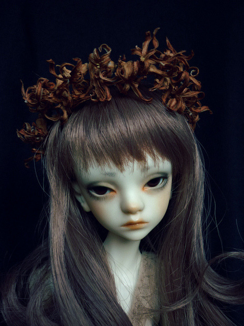 my little wilted flower, on Flickr. Chil.  I ordered you 1 year ago <3 wow…