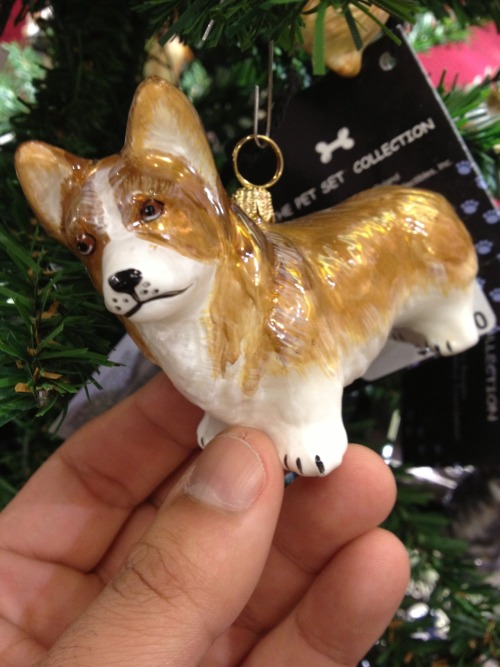 I found this corgi Christmas ornament at Bloomingdales in New York City—too cute!  Submitted by Nicholas Deleon