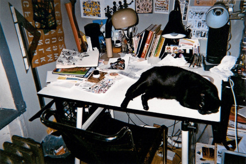Lil' Peanut having a quick nap on the desk of New York-based illustrator Avi Spivak.
