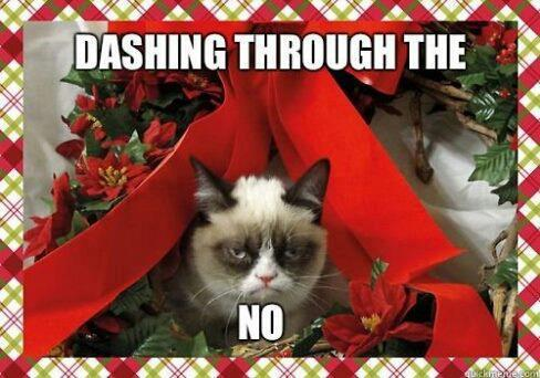 THIS IS MY FAVORITE!!!!! nicole-tries:  Gosh I love grumpy cat… Christmas… not so much.