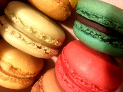 A lovely assortment of macarons.