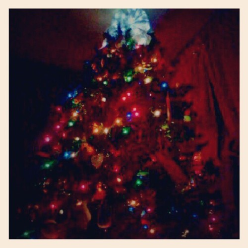 Love just laying next to our beautiful Christmas tree <3 :)