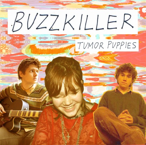 "Theme Song: November 2012  ""Buzzkiller"" by Tumor Puppies"