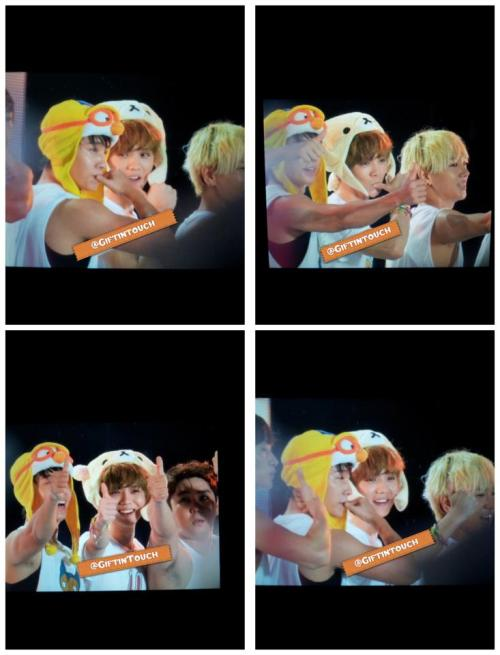 sjsmilealways:  Lol Luhan so cute XD  cutie pororo and rilakkuma \m/