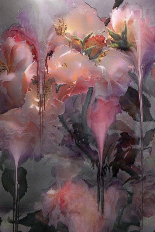 pubertad:  Nick Knight: Flora
