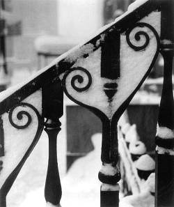 yama-bato:  Wrought Iron Design in Snow, NYC, 1945 Artist:Ida Wyman Medium:Gelatin Silver print Dimensions:11 x 14 inches  ほんと山鳩さん ときどきイイのUPしてくるんだよね。 via