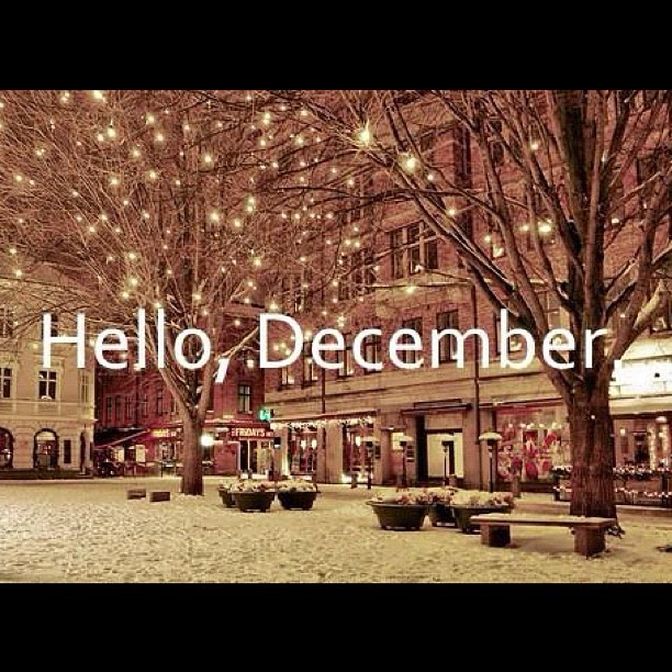 Goodbye November, Hello December - New Month New Opportunities #goals #new #committobefit #igers #tumblr #newmonth #winter #holidayseason #snow #Christmas