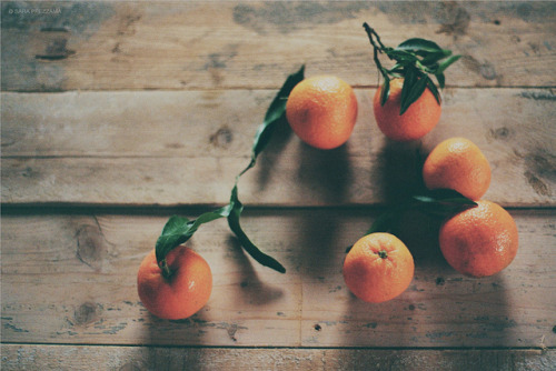 clementines by {sara p} on Flickr.