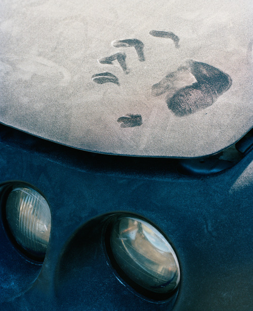 thomasprior:  dusty handprint, queens, 2012