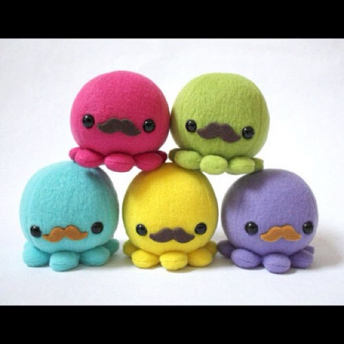 foreverlasting11:  #cute #icecream #moustache #funny #octopus #colours
