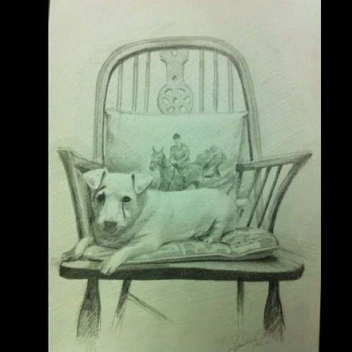 Small Pet portrait for someone… #drawing #pencil #art #artist #pet #dog #petportrait #petportraits #sketch #animal #animals