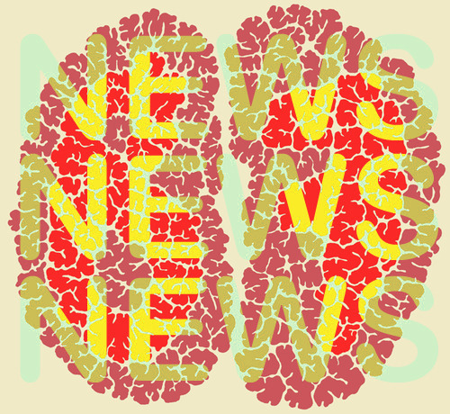 What's new? The BRAIN FRAME NEWSLETTER! Sign up now to receive jam-packed, fun-filled, monthly updates on all things BRAIN FRAME in the calmer, more adult environment of your email inbox. Social medias ebb and wane, but email is forever.