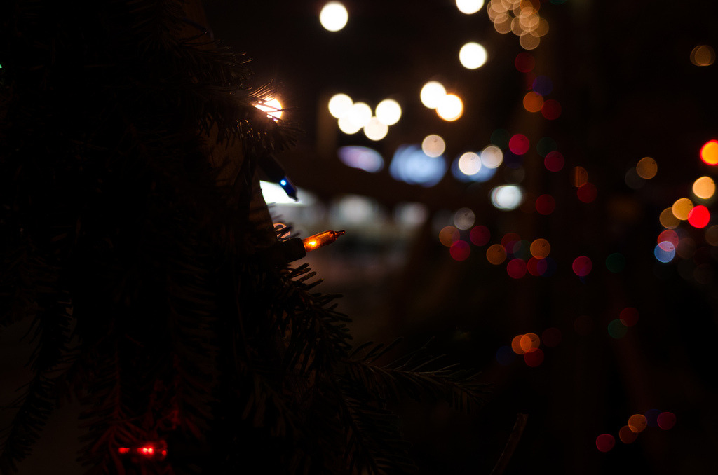 joelzimmer:  Sparkle Park Slope, Brooklyn  Christmas lights
