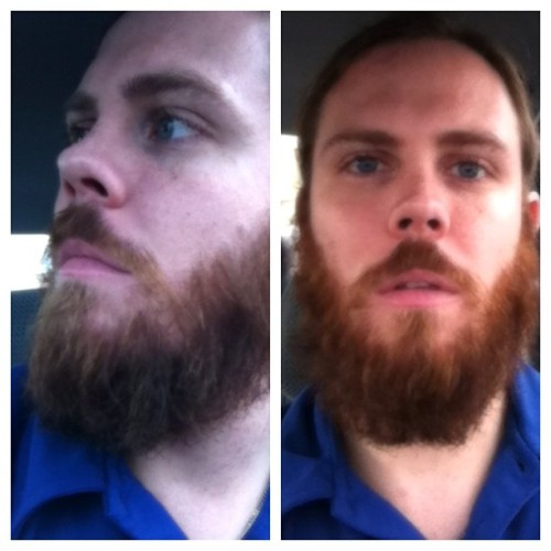 guntroid:  Going monthly. December 1st. #beard