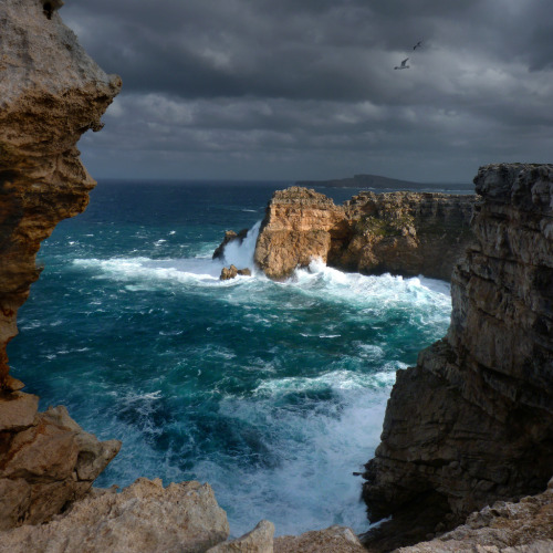 llbwwb:  The most northerly point of Menorca (by B℮n)