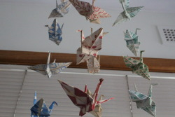 hand-painted paper cranes, on invisible string…