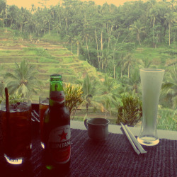 Rice terrace view from Teras Padi Cafe, Tegalalang #Ubud