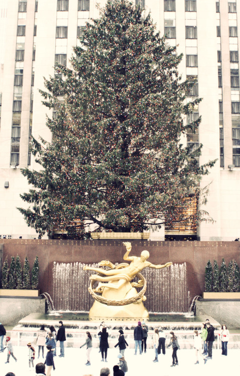 December ! Rockefeller Christmas Tree - NYC ©meve 2012