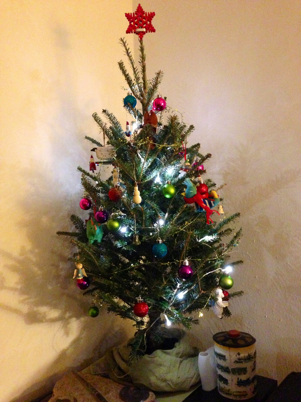 Our first christmas tree! We've named him Niles.