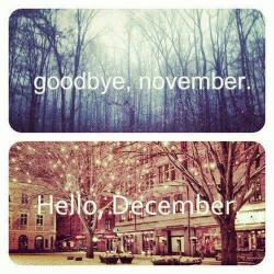 Bye November… December Welcome!!