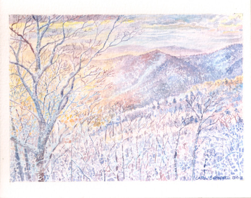 Virginia Blueridge winter