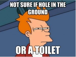 Hole or Toilet?