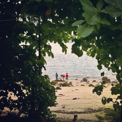 Treasure hunting (at Punggol Beach)