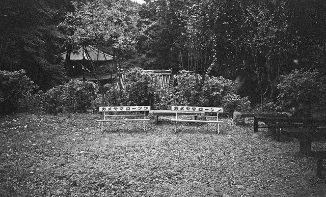 benches on Flickr.