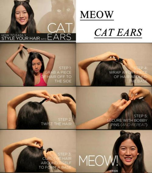 fydiy:  How to easily style your hair into cat ears!