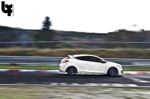 Magnetic attraction Starring: Renault Megane RS (by Bas Fransen Photography)