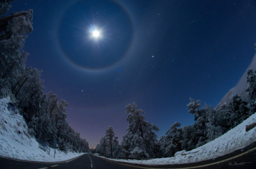 ikenbot:  A Quadruple Lunar Halo Over Spain Sometimes falling ice crystals make the atmosphere into a giant lens causing arcs and halos to appear around the Sun or Moon. Image Credit & Copyright: Dani Caxete This past Saturday night was just such a time near Madrid, Spain, where a winter sky displayed not only a bright Moon but as many as four rare lunar halos. The brightest object, near the top of the above image, is the Moon. Light from the Moon refracts through tumbling hexagonal ice crystals into a 22 degree halo seen surrounding the Moon. Elongating the 22 degree arc horizontally is a circumscribed halo caused by column ice crystals. More rare, some moonlight refracts through more distant tumbling ice crystals to form a (third) rainbow-like arc 46 degrees from the Moon and appearing here just above a picturesque winter landscape. Furthermore, part of a whole 46 degree circular halo is also visible, so that an extremely rare — especially for the Moon — quadruple halo was actually imaged. The snow-capped trees in the foreground line the road Puerto de Navacerrada in the Sierra de Guadarrama mountain range near Madrid. Far in the background is a famous winter skyscape that includes Sirius, the belt of Orion, and Betelgeuse all visible between the inner and outer arcs. Halos and arcs typically last for minutes to hours, so if you do see one there should be time to invite family, friends or neighbors to share your unusual lensed vista of the sky.