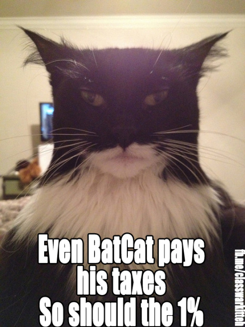 If BatCat can pay his damn taxes then the rest of the 1% need to pay theirs.