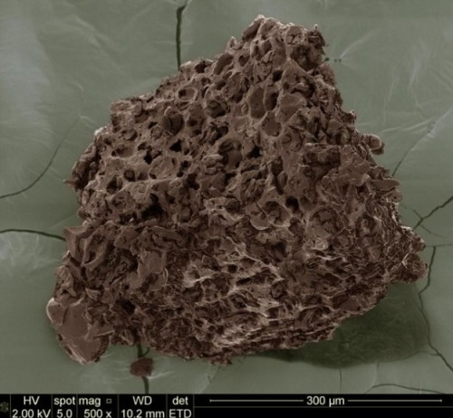 The porous structure of ground coffee.     […] I will now use this as an illustration of the sponge-like nature of coffee forever.   —Peter Giuliano