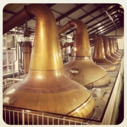 lifeofawhiskeydrinker:  Ardmore Distillery  This makes me excited to go back for another round of bottling and labeling at the local Chicago distillery.