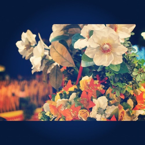 #Flowers #Batumi #Seaside #evening #night #summer #colors